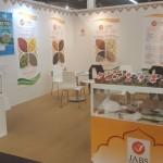 exhibition77